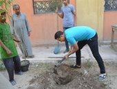 صور.. قيادات إسنا يشاركون شباب المدرسة الحديثة بعزبة صقر فى زراعة 50 شجرة