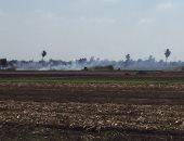 اضبط مخالفة .. المزارعون يحرقون قش الأرز بمدخل قرية برما بطنطا.. صور