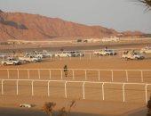 رئيس مدينة شرم الشيخ: سباقات الهجن يقدم جوائزه المالية من الاتحاد الإماراتى