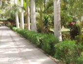 """""""الحديقة النباتية"""" أبرز المقاصد السياحية فى أسوان"""