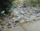 أهالى التجمع الأول يشكون انتشار القمامة بالشوارع