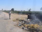 صور.. إحالة مسئول النظافة بقرية جريس بأبو قرقاص فى المنيا للتحقيق