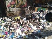 صور.. القمامة تحاصر مدرسة محمد كريم بمنطقة المطرية