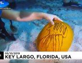 """فيديو.. مسابقة للنحت على """"القرع"""" تحت الماء فى محمية بحرية"""