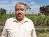 مدير عام الإرشاد الزراعى بالشرقية: تحرير 100 محضر حرق قش الأرز