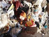 قارئ يشكو انتشار القمامة بشارع عبد القادر بالمحلة محافظة الغربية