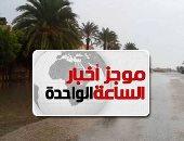 موجز أخبار الساعة 1 ظهرا .. أمطار على سيناء وجنوب البلاد غدا تصل لحد السيول