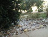 أهالى المجاورة 6 فى التجمع الأول يشكون من تراكم القمامة بالشوارع