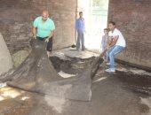 صور.. إرسال جلد الفيلة نعيمة لمدابغ الروبيكى واستكمال مراحل التحنيط