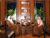 وزير الدولة للشؤون الخارجية بالسعودية يستقبل سفير الإمارات