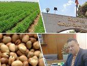 الزراعة تشكل لجان متخصصة للتعريف بأصناف الفول البلدى لزيادة المساحات