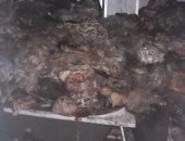 ضبط 800 كيلو لحوم وأسماك ومنتجات ألبان غير صالحة للاستهلاك بمول فى الجيزة