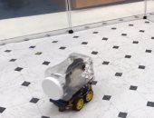 فيديو.. علماء ينجحون فى تعليم الجرذان قيادة سيارات صغيرة