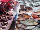 أسعار الأسماك اليوم الجمعة.. انخفاض البورى والكيلو يبدأ من 32 جنيهًا