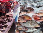 انخفاض أسعار الأسماك تزامنا مع انخفاض اللحوم والدواجن.. البلطى يتراوح بين 20 و35 جنيها والبورى من 35 لـ60.. الدينيس يتراجع من 160 إلى 100 والكاليمارى من 170 إلى 140.. وهبوط الجمبرى الجامبو من 400 لـ300