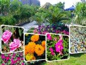 تعليق عمل أكبر سوق زهور فى آسيا فى جنوب غربى الصين