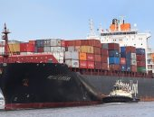 مطالبات بتقييد سرعة سفن المحيطات لحماية الحيتان والحفاظ على البيئة