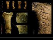اكتشاف أثرى جديد..شعوب النياندرتال صنعوا المجوهرات والحلى قبل 40 ألف سنة