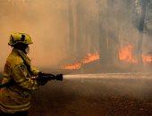حرائق الغابات تستمر على طول الساحل الشرقى لأستراليا