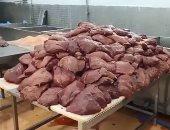 ضبط 35 طن أغذية فاسدة داخل مصنع لحوم بالعاشر من رمضان