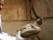 ما سر طائر أبو منجل في الحضارة الفرعونية ؟ .. جارديان البريطانية تجيب