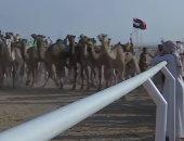 سكاى نيوز تسلط الضوء على المهرجان الثاني لسباقات الهجن فى شرم الشيخ