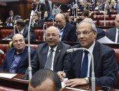 صور.. مطالب برلمانية بخطة شاملة لـ3 وزارات لمواجهة أزمة الأمطار والتغيرات المناخية