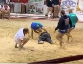 فيديو.. حكم يتعرض للضرب خلال مباراة مصارعة بإسبانيا