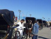 صور .. مسابقة أجمل حصان بقلعة قايتباى لتنشيط السياحة
