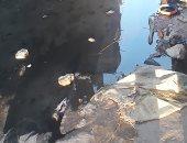 شكوى من انتشار مياه الصرف الصحى بشارع الرحمة بعزبة البكاتوشى
