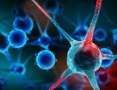 دراسة حديثة: علاجات السرطان لا تؤدى إلى تفاقم الإصابة بفيروس كورونا