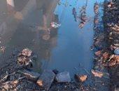 شكوى من غرق قرية الوزارية بكفر الشيخ بمياه الصرف الصحى