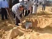 محافظ الفيوم يشارك فى غرس 1000 شجرة لتجميل شاطئ بحيرة قارون.. صور