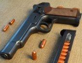 الإدارية العليا: لا يجوز ترخيص السلاح للمتشردين والمرضى النفسيين