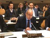 مصر خلال  منتدى الأمم المتحدة: مواجهة جائحة كورونا تتطلب تضافر جهود المجتمع الدولي