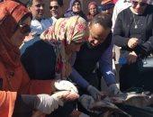 بيطرى الوادى الجديد ينفذ حملة مكبرة على محلات الجزارة والأسماك ويعدم بقرة مريضة