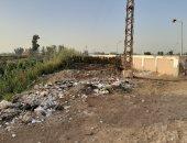 صور.. أهالى البحارواة يستغيثون بمحافظ الشرقية: بنروى الأرض بمياه الصرف