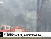 فيديو.. رجال الإطفاء يخمدون حرائق الغابات فى أستراليا