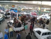 تحرير 160 محضر مخالفات إشغالات بحملة مكبرة بشبين القناطر