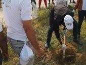 صور.. متطوعو الاتحاد الإفريقى يزرعون 100 شجرة بمنتدى 15 مايو