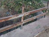 أهالى قرية الزعفرانى بكوم حمادة فى البحيرة يطالبون بتنظيف الترعة من المخلفات وورد النيل