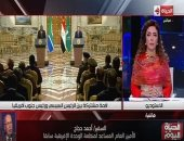 دبلوماسى سابق: انتهاء رئاسة مصر للاتحاد الإفريقى لا يعنى توقفها عن التعامل مع قضايا القارة