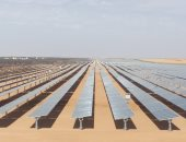 مصدر بالكهرباء يكشف عن موعد افتتاح أكبر محطة للطاقة الشمسية بأسوان