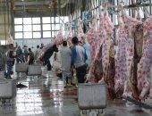 الزراعة: 151 ألف رأس ماشية و7.5 مليون طائر مذبوحات بالمجازر خلال 30 يومًا
