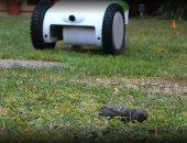 روبوت يكشف مكان براز الكلاب وينظفه باستخدام أجهزة الاستشعار