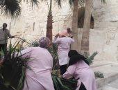 """""""آثار الإسكندرية"""": بدء أعمال تنسيق الحدائق بقلعة قايتباى.. صور"""