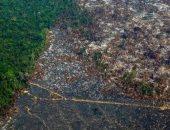 ارتفاع نسبه إزالة الغابات فى منطقة الأمازون البرازيلية 64% فى أبريل