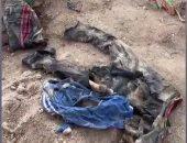 العثور على مقبرة جماعية تضم 643 جثة بالعراق تعود إلى عام 2016