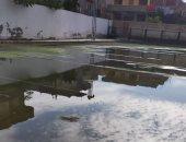 شكوى أهالى كفر الزيات من غرق مركز شباب الشهيد إبراهيم قطب بالصرف الصحى
