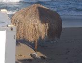 إدارة السياحة والمصايف بالإسكندرية : لايوجد صرف على البحر بشاطئ الشاطبى